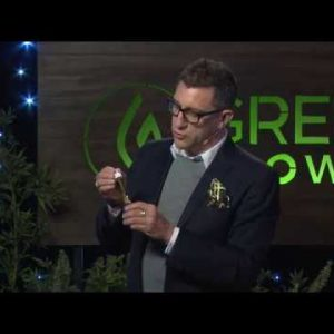 Cannabis 101: Finding Relief Without the High - Joe Dolce - Green Flower Cannabis Health Summit