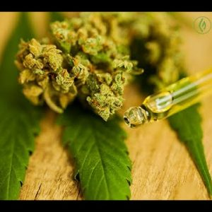 Understanding Cannabinoids: Your Complete Cannabis Guide / Samantha Miller / Green Flower