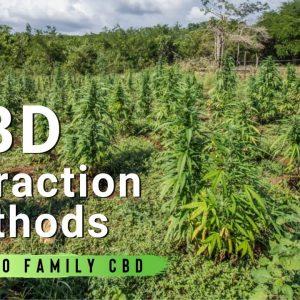 CBD Extraction Methods | How To Extract CBD | Part 4