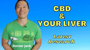 Does CBD Damage the Liver?  Latest Research. Doctor Jack Episode 37