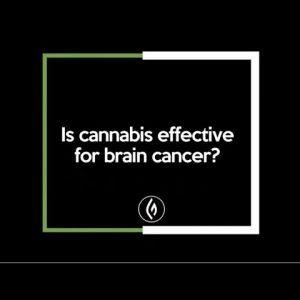 Using Cannabis for Brain Cancer: Mara Gordon / Green Flower Cannabis Beginner's Series