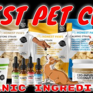 #1 rated Pet CBD line,  Honest Paws CBD, added to our store & website | CBD Headquarters