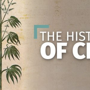 The History of Hemp and CBD