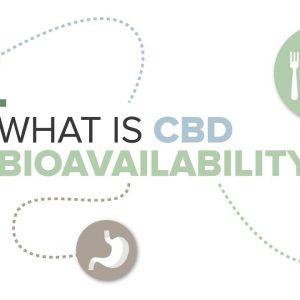 What is CBD Bioavailability?