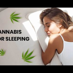 Can You Restore Your Natural Sleep Cycle With Cannabis?