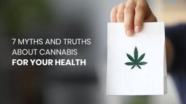 Myths & Truths About Cannabis for Your Health