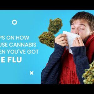Using Cannabis When You've Got The Flu