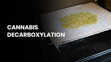 What is Decarboxylation?